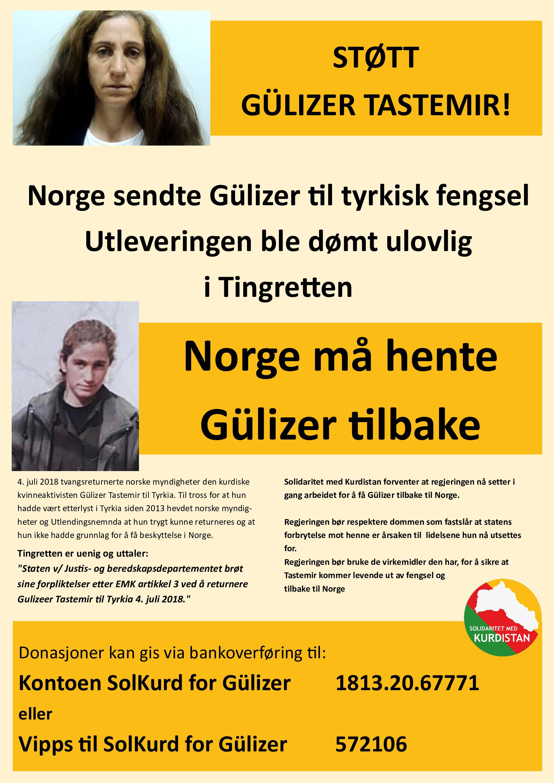 Gülizer-plakat-6 (1)_p001.jpg